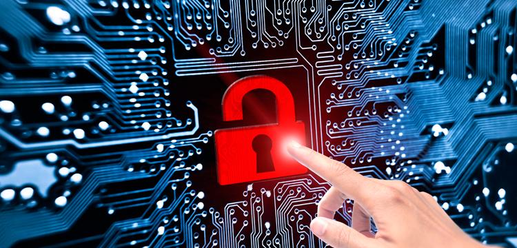 7 dicas sobre Segurança da Informação na sua empresa